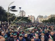 Xylella, l'allarme degli agricoltori Migliaia in piazza a Monopoli