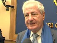 Presunte false tessere del Pdl, assolto ex senatore D'Ambrosio Lettieri