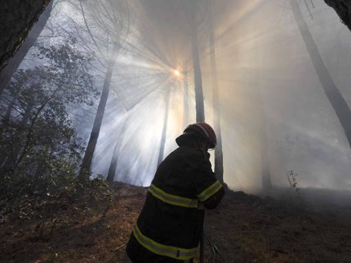 Siracusa, arrestati due pastori: progettavano un mega incendio  a Ferragosto